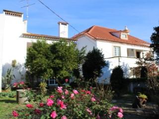 Quintas e casas rústicas T10
