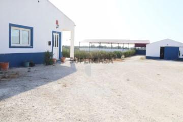 Quintas e casas rústicas T0 em Moçarria
